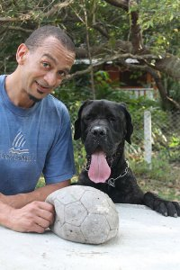 Dogfather Dog Training